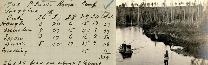 Left: A 1902 diary entry detailing some of the last grayling caught in the Black River. Of the 339 fish caught in five days, forty-four were grayling, and some as big as trout. [Au Sable, 1898-1911, Box 43, Folder 2].